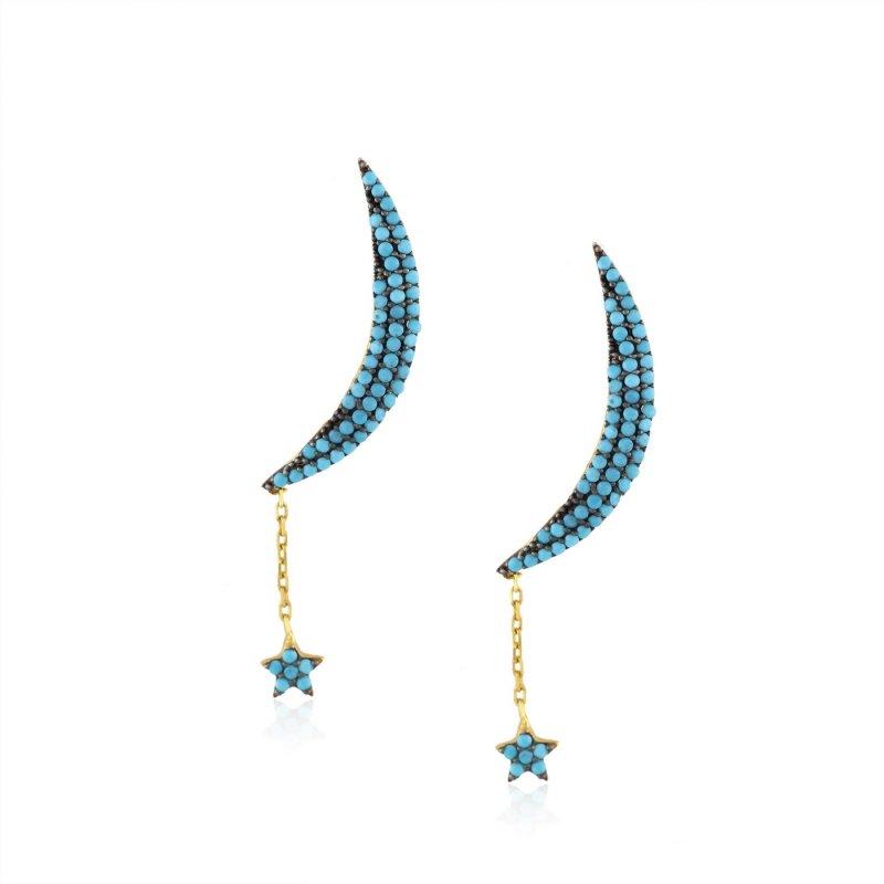 Moon & Star Dangle Silver Earring
